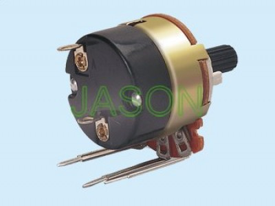 R24AS3-40 With Switch Potentiometers
