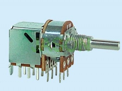 R162GPS-20 With Switch Potentiometers